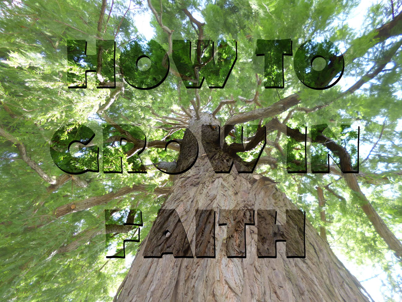 How to Grow in Faith