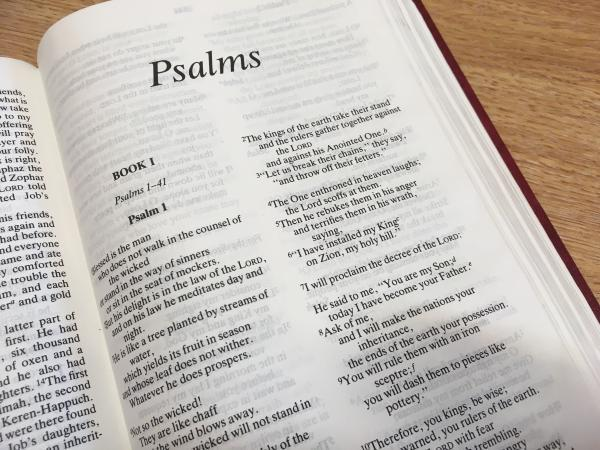 6.30pm - Favourite Psalms 3 (Psalm 27) Image